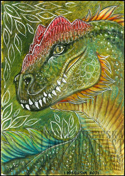 ACEO: Andromedaswitchery