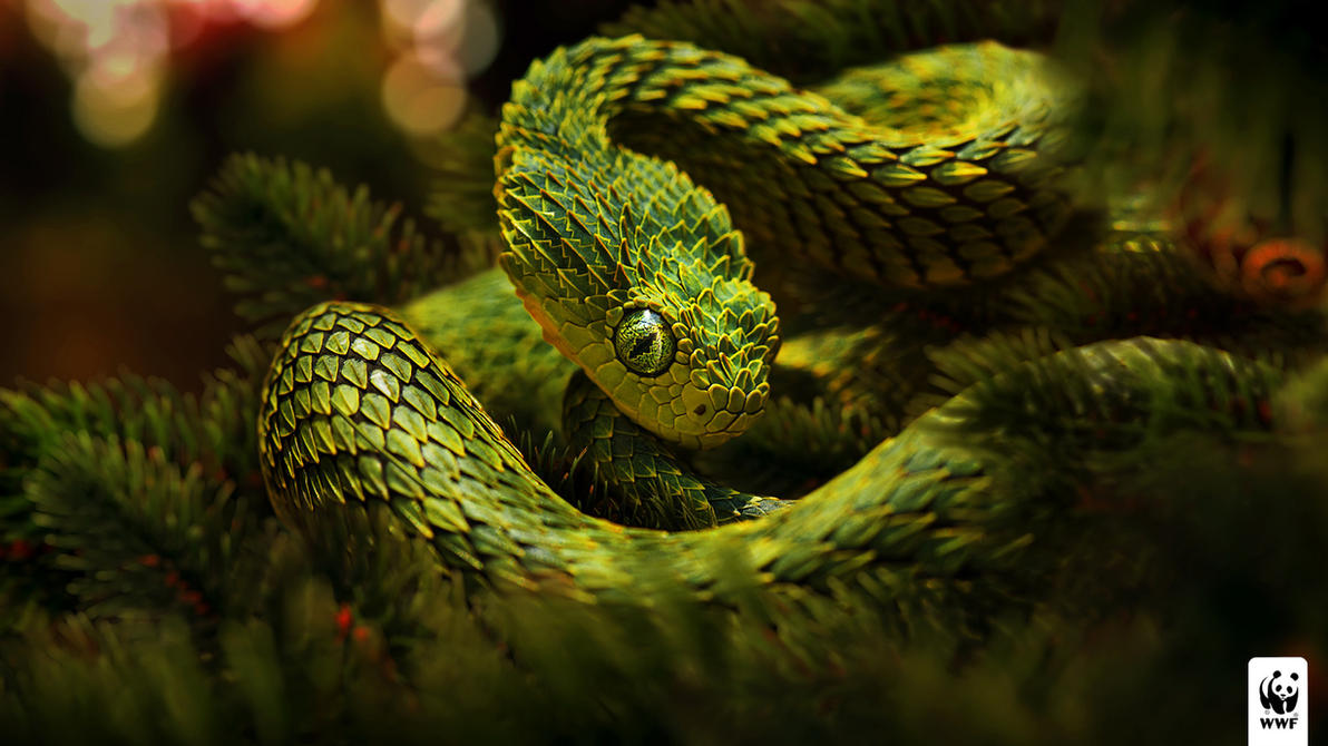 Christmas snake by glazyrin
