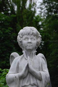 angel-boy 2