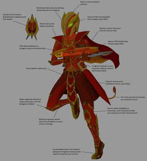Crimsoul Brotherhood Elite Armor