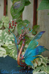 Wyvern and Nightshade Berries by LilacGrove