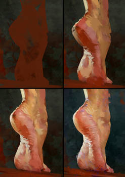 Foot Study Process
