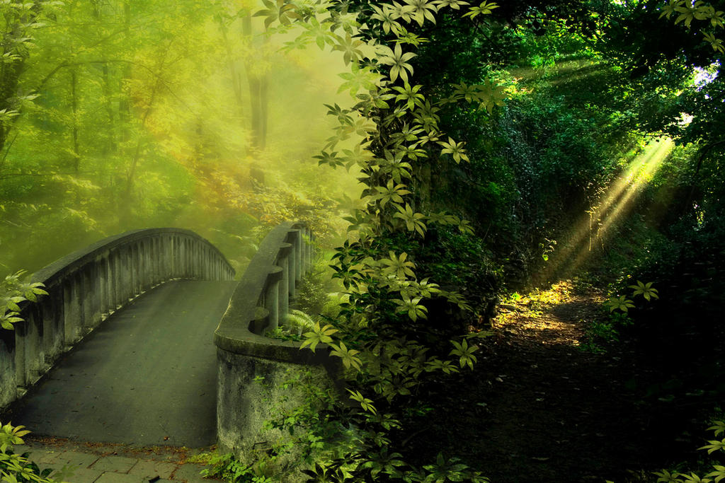 A road less travelled by rustymermaid
