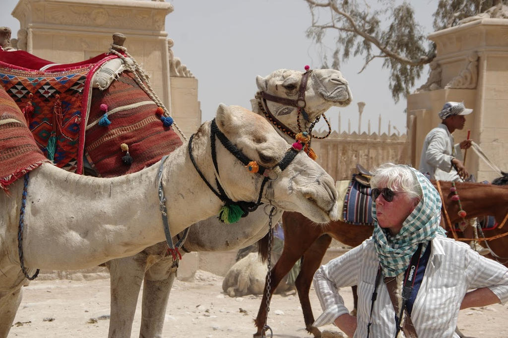 Kissing Camels in Cairo by rustymermaid