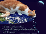 Flat Earth theory...and cats
