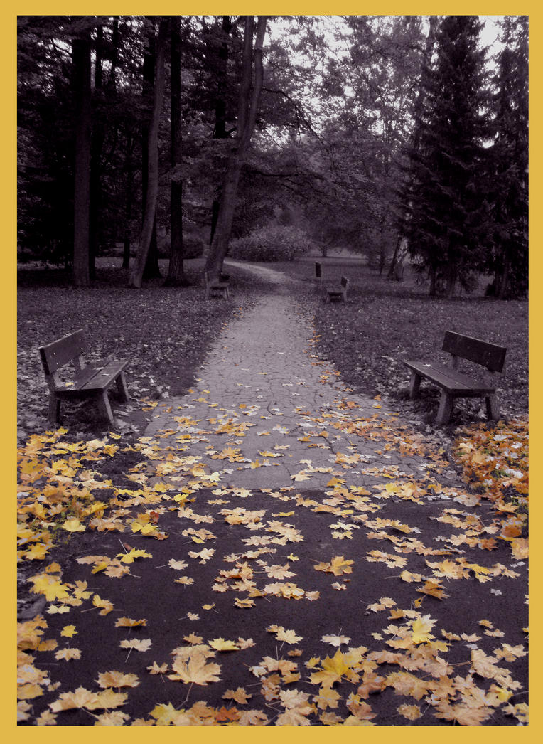 An autumn path in the park by What-is-worth