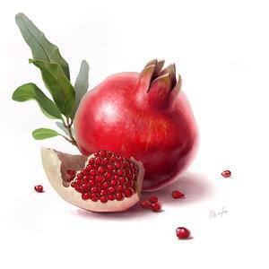 Pomegranate... by denfo