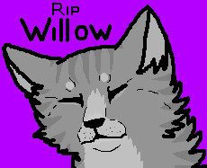 R.I.P Willow by xX-Chase-Xx