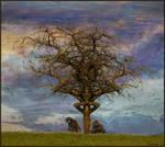 Sacred Ancestrial Tree