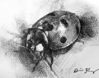 Ladybug by Cooooookies