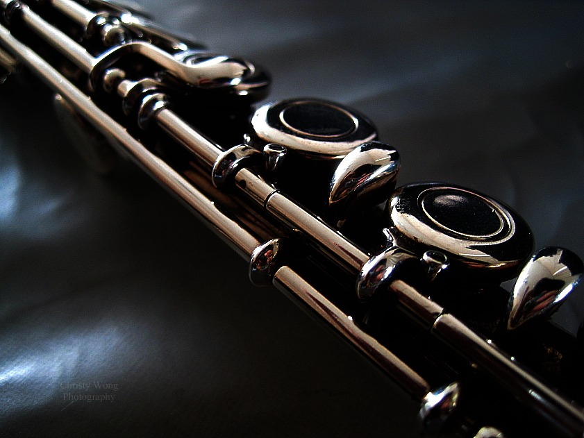 Flute by AsianDomination