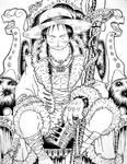 Luffy King of Pirates