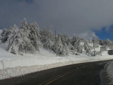 Snow's In Lebanon