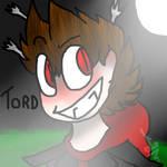 Tomsworld Tord
