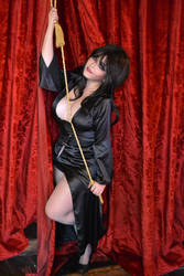 Elvira Mistress of the Dark by Dairetto