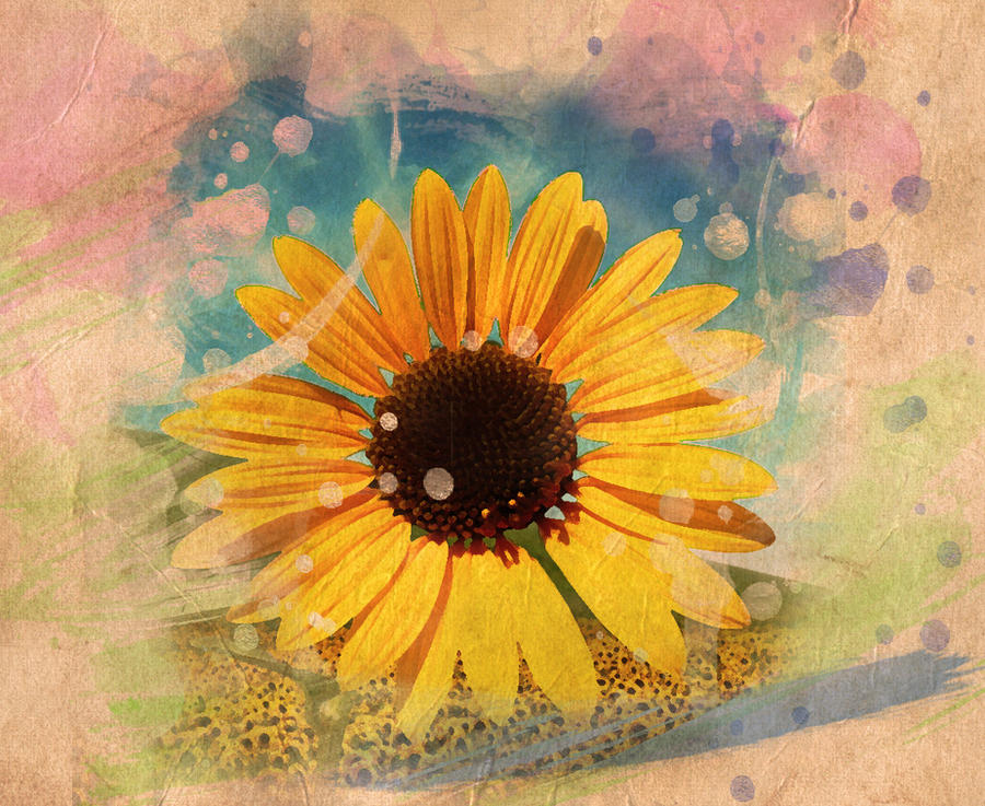 Sunflower by Jezzy-Art