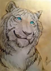 Smile Tiger Eldi by vagab0nda