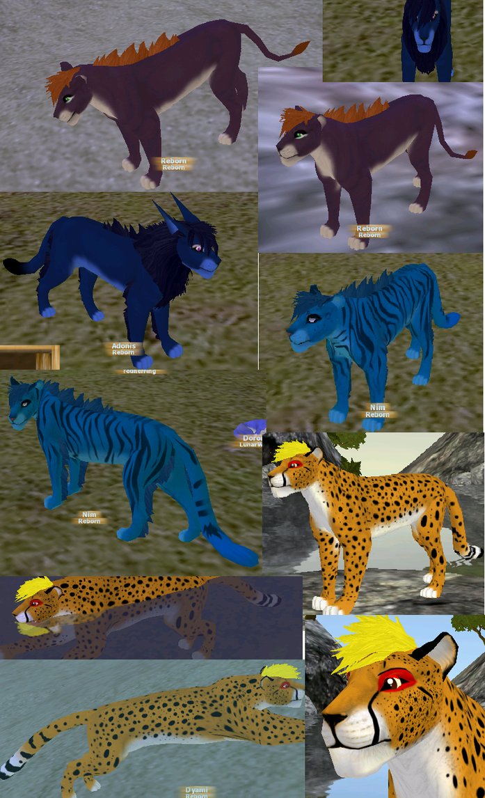 Feral Heart: FeralHeart Characters Set 1 By TheDeadlyTwig On DeviantArt