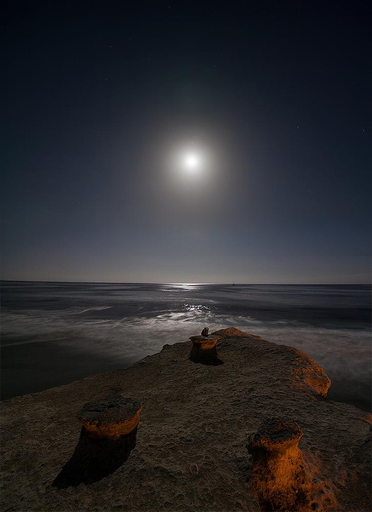 Seabright by Argonavis