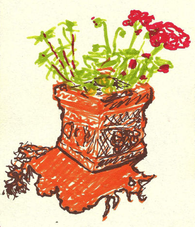 Potted Flowers Mid-Day