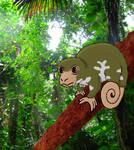 Marsupial Chameleon