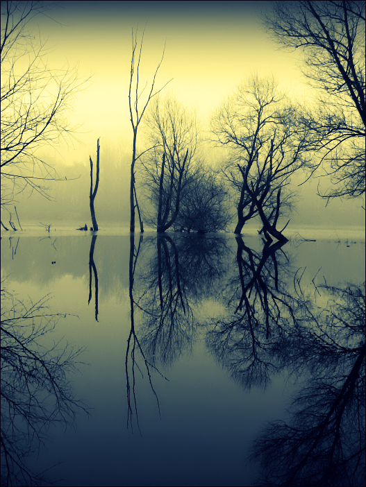 Mirror I. by D-look