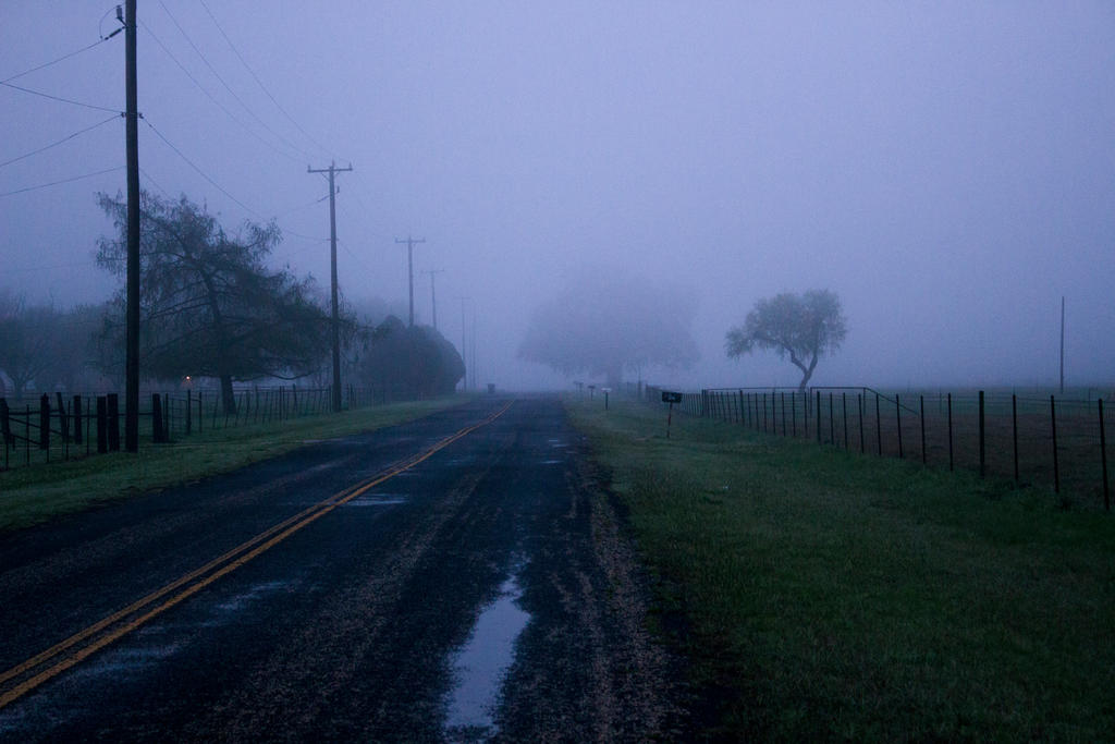 Fog 6