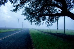Fog 8 by kwuus