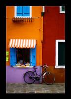 quattro colori by cei-