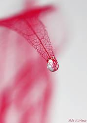 Waterdrop by ada-adriana