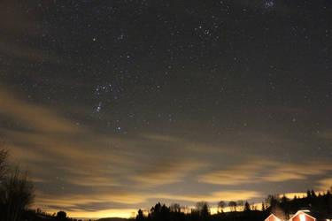 starry nigth