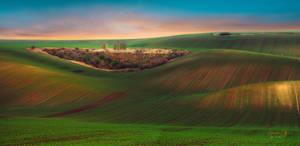 Somewhere in Moravia