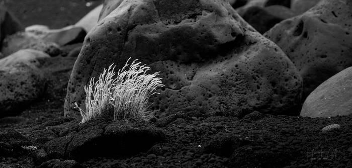 High contrast old rocks