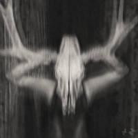 Tenebris insanias by Dario-L-Art