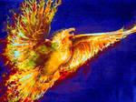 Flight of Pheonix