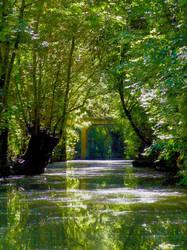 Fey sunray on hags'swamp by BelphegorDeLEsip