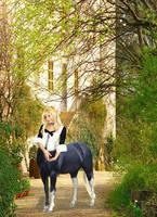 Fanciful centaur by ryansgurl1312