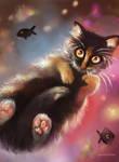 Fluffy Cat Dreams