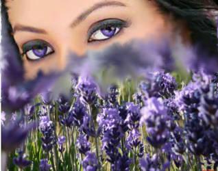 A Purple Flower by mkawilke