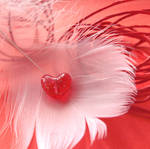 Heart [08.2014] by SabakuNoShi