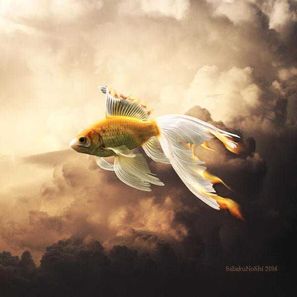 Hot fish by SabakuNoShi