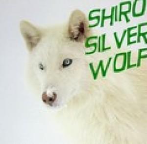 Shiro-SilverWolf's Profile Picture