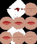 Lip Tutorial