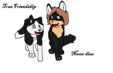 True Friendship by Huskey1998