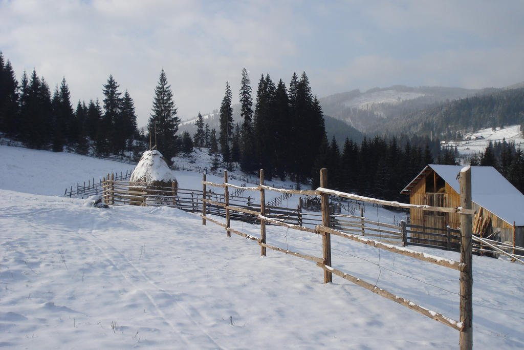 Snow Snow :D by RoyalArt-BoleaVladut