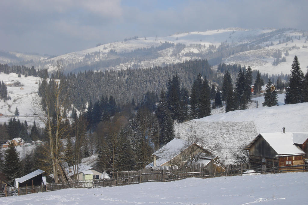 Mountain by RoyalArt-BoleaVladut