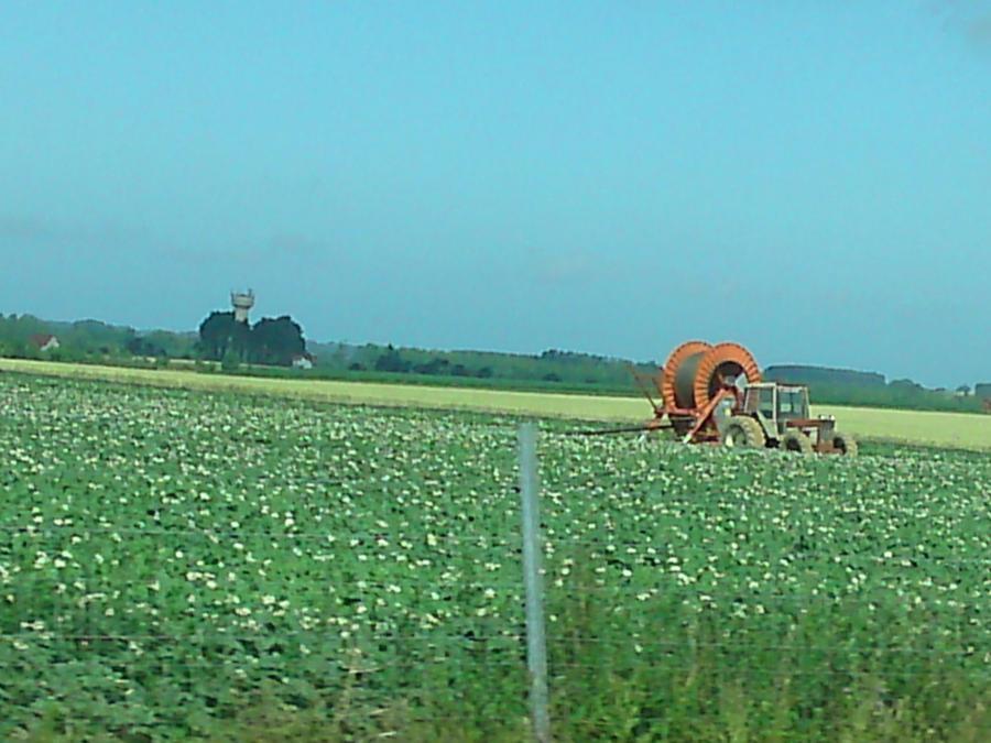 Le Tracteur by lillilotus