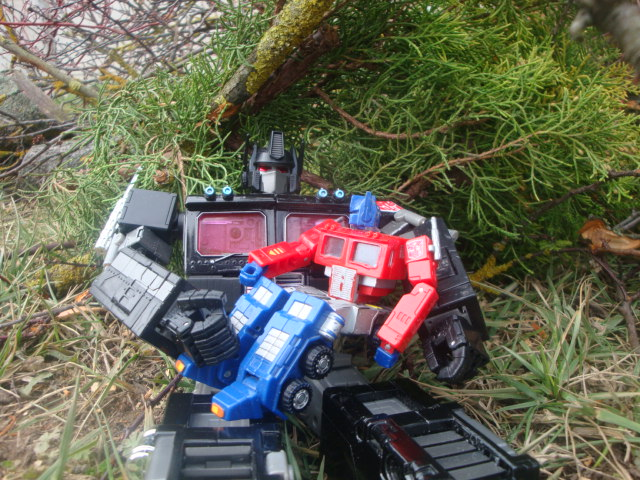 Vegeto / Optimus SG  collection (partie 1) - Page 4 Vus_de_pres_sous_l_arbre_by_radimusprime-d4rczt0