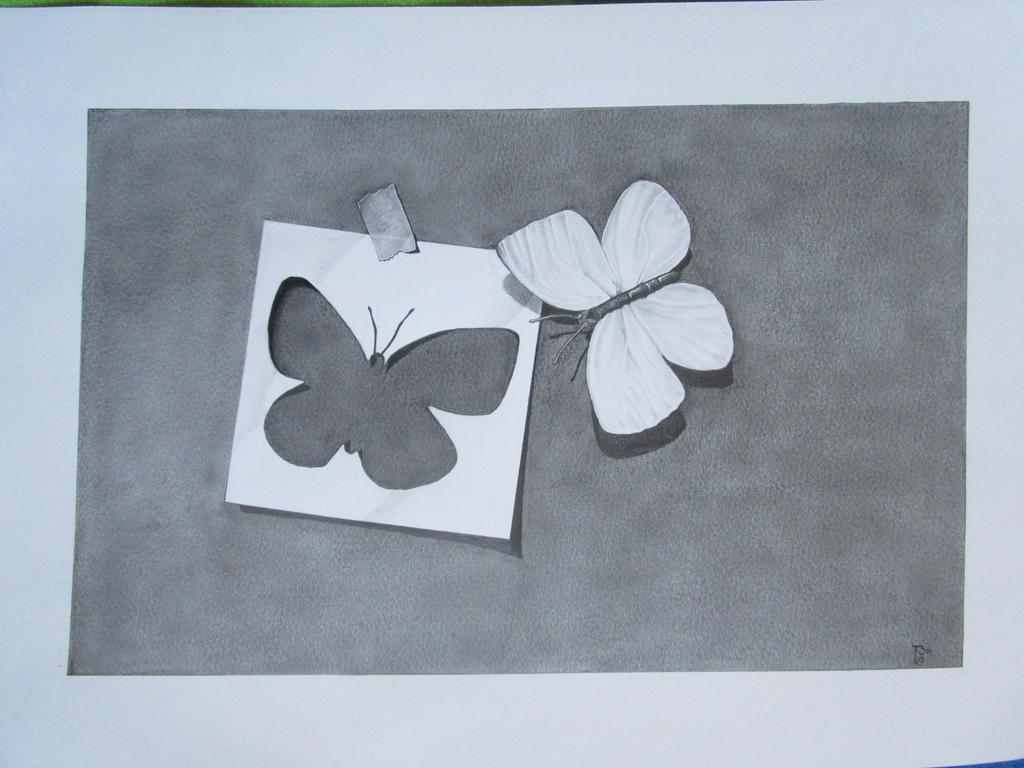 Trompe l'Oeil #1 Butterflies by TomaszLam
