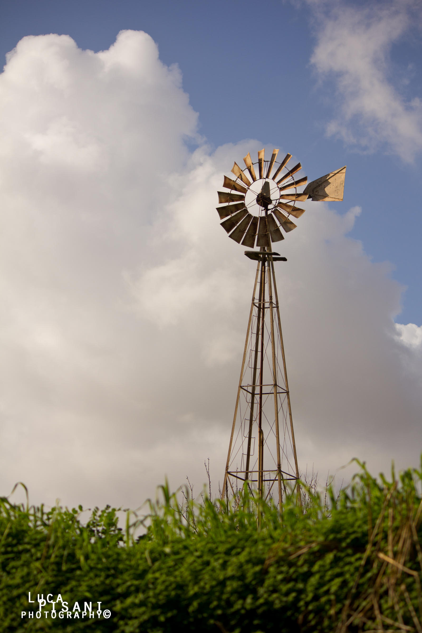 Maltese Windmill by Maltese-Naturalist